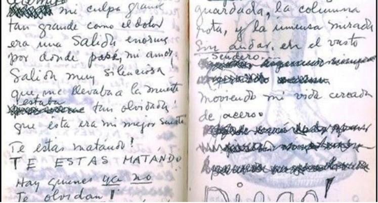 Extracto diario de Frida Khalo 2